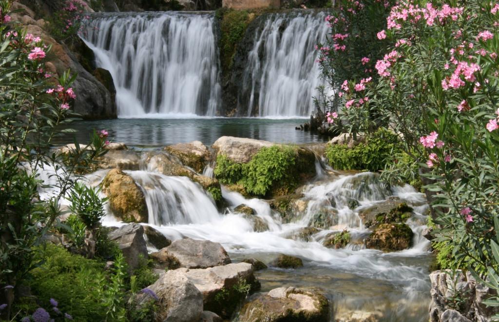 Trips to algar falls from benidorm webcam