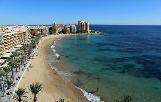 Smart palm trees to be installed in Torrevieja for phone charging at the beach
