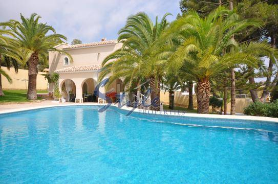 Luxury villa with private pool in Villamartin